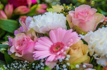 flowers-986006_1920